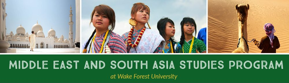 Middle East and South Asia Studies Program